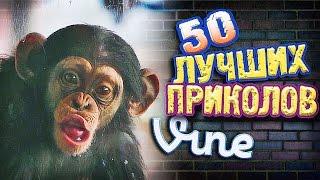 Самые Лучшие Приколы Vine! (ВЫПУСК 137) Лучшие Вайны