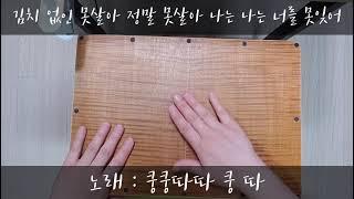 정광태 김치주제가 무릎카혼 연주