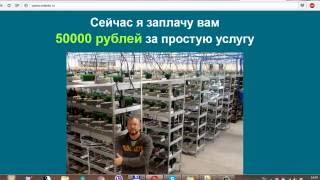 Виктор Панфилов владелец bitcoin фермы - обманщик? Отзыв от компании