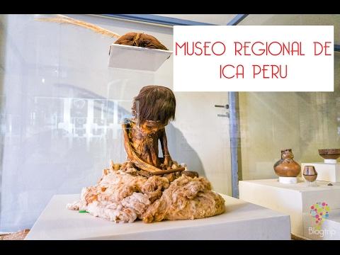 La momia Nasca de 8 años: visita al museo regional de Ica Perú