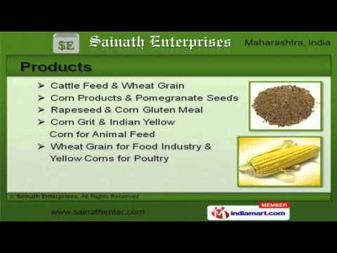 Cattle Feed & Food by Sainath Enterprises, Navi Mumbai