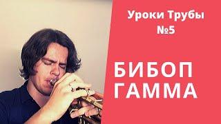 Уроки Трубы №5  Как Импровизировать  Уровень Новичок #3 Что такое бибоп гаммы