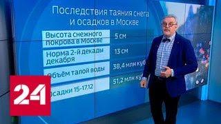 """""""Погода 24"""": предновогоднюю Москву зальет ливнями - Россия 24"""
