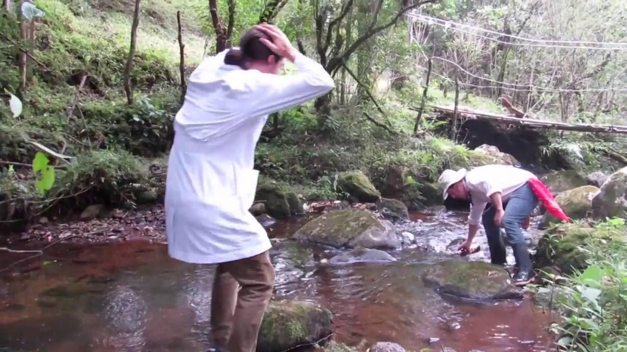 Toma de muestras de agua para analisis bacteriologico for Toma de agua