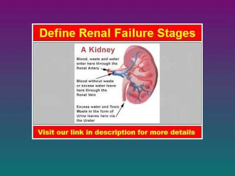 Renal Failure Stages