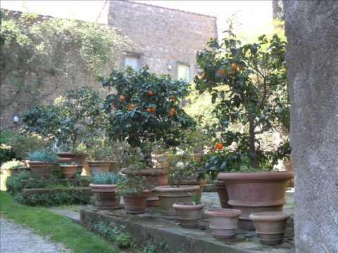 Tenuta caracciolo a torrecchia di cisterna lt youtube - I giardini di alice latina lt ...