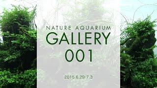[adaview] Nature Aquarium Gallery#001(en)