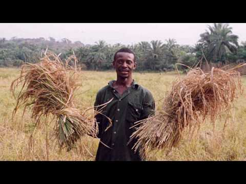 Kiva and Sierra Leone