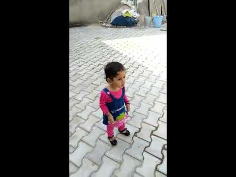 Bolan me bhi tota re Haryanvi dance