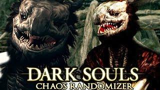 Dark Souls Chaos Randomizer Challenge : Dragon Bois