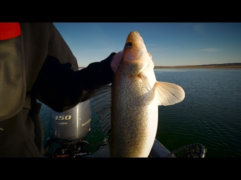 """Trolling for Missouri River Walleyes"" - In-Depth Outdoors TV, Season 10 Episode 15"