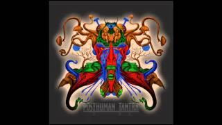 """Posthuman Tantra - Arte da capa do álbum """"Lúcifer Transgênico""""(1)"""