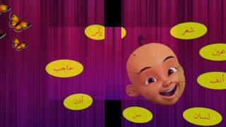 Mari Belajar Anggota Badan Dalam Bahasa Arab