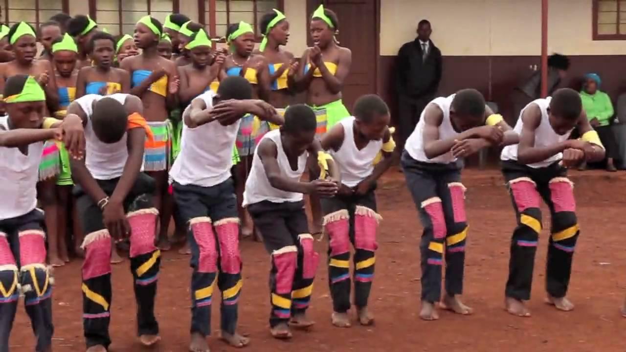 Dancing Bear South Africa