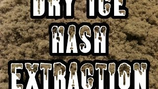 Belgian Dry Ice Hash Extraction - Extraction Hash Glace Carbonique