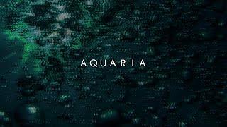 aquaria makeup