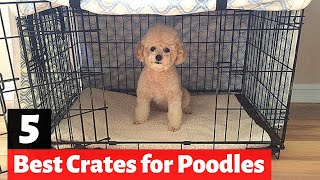 5 Best Dog Crates for Poodles and Poodle Mix-Breeds