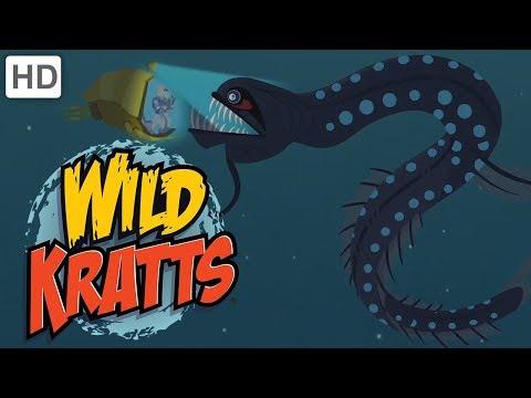 Wild Kratts - Dive into the Atlantic Ocean!