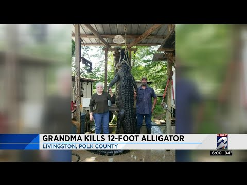 Grandma Kills 12-foot Alligator