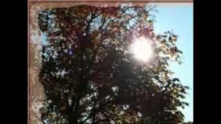 Jan Nedvěd - Kohout (Zvony zvoní jen chvíli) [4]