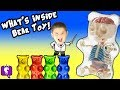 What's in a SPECIAL Gummi BEAR? Gummy Science Facts Surprise HobbyKidsTV