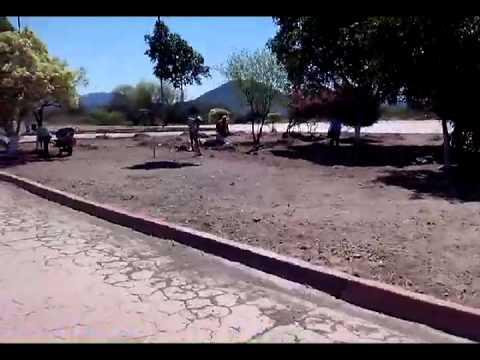 Campaña Yo Soy Guaymas En San Carlos 2