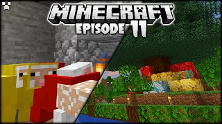 DECORATING Our Minecraft Christmas Tree! | Python Plays Minecraft Survival [Episode 11]