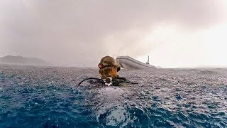 diving-with-peaceful-giants-adventure-45-of-sailing-around-the-world