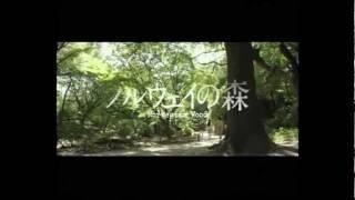 Norwegian Wood - Haruki Murakami [Full Trailer]