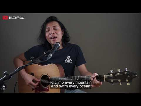 You Are The Reasons Calum Scott [ Lyric ] Felix Irwan Cover
