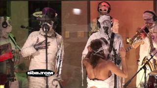 Watch Here Come The Mummies Ocdd video
