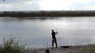 Ловля карпа Осенью! Рыбалка Тут Клюет!