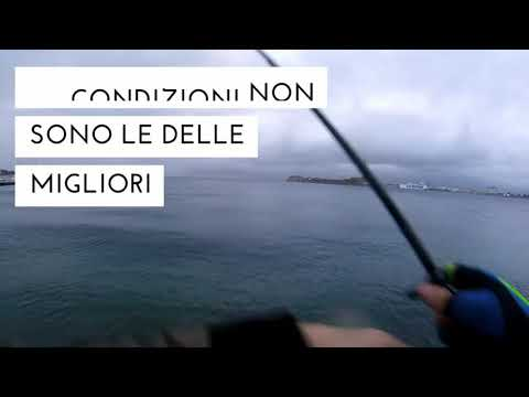 **SHORE JIGGING** palamite in tempesta