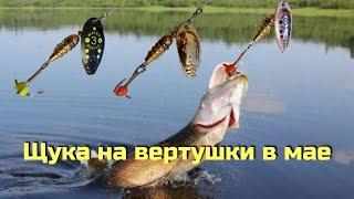 ЩУКА НА ВЕРТУШКУ В МАЕ Рыбалка на спиннинг с берега на озере В этой луже ЕСТЬ рыба