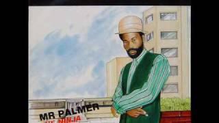 Mr. Palmer - Preacher