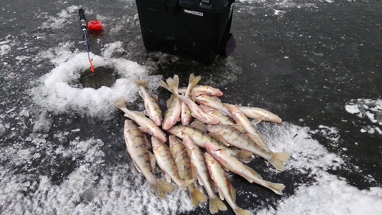 Рыбалка 2019 зима кама