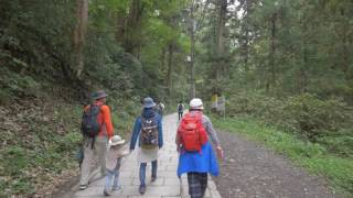 【4K】Tokyo hiking - Takao mountains