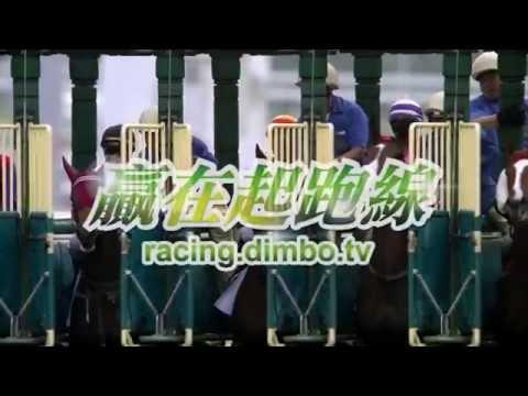 馬季開鑼 贏在起跑線 賽馬日前夕9點 黎料!