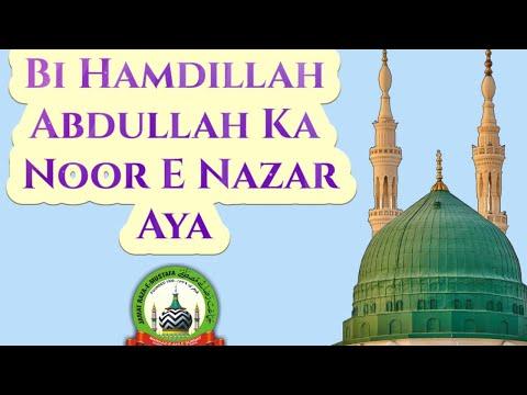 Abdullah Ka Noor e Nazar Aaya by Muhammad Sadiq Razavi