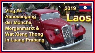 Die 3 TOP Attraktionen in Luang Prabang Stadt | Laos 2019 Vlog #5