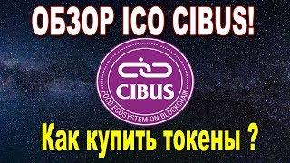 Обзор ICO Cibus. Как купить токены блокчейн платформы для пищевой промышленности Cibus!