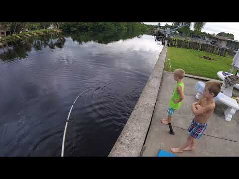 Southwest Florida Backyard Fishing