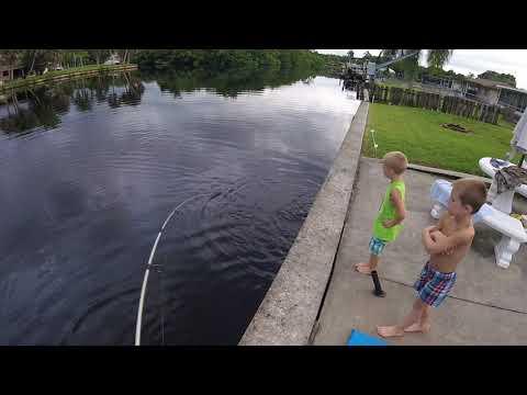 Southwest Florida Backyard Fishing