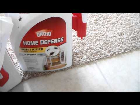 HOME DEPOT DEAL-Ortho Home Defense Max