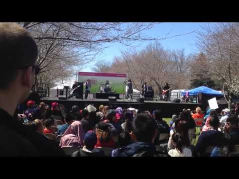 Philadelphia Cherry Blossom Festival 2015
