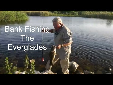 Bank Fishing The Everglades