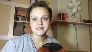 Упражнение на скрипке