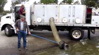 Lake Mission Viejo 4000 Pound Trout Stocking