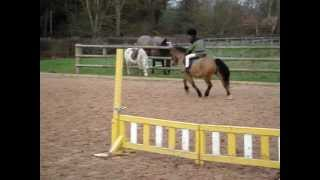 5 year olds SHOW JUMPING!