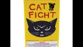 Cat Fight 200 gram fountain by Blackcat fireworks demo and review